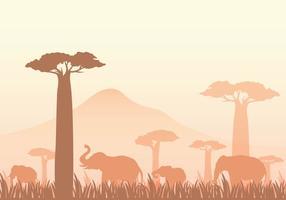 Illustration vectorielle gratuite Baobab