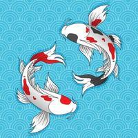 deux poissons koi japonais nagent. vecteur
