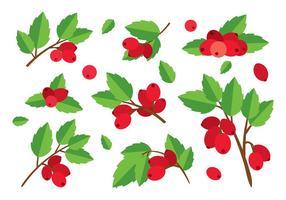 Vecteur plat rose-rouge