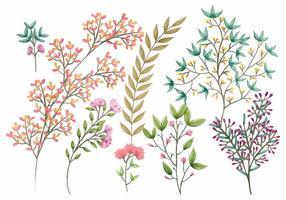 Éléments floraux vectoriels Boho vecteur