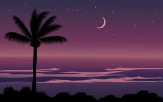 plage tropicale de nuit vecteur