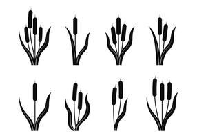 Cattails silhouette vecteur