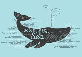 Baleine vectorielle gratuite vecteur