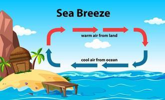 conception d'affiche éducative scientifique pour la brise marine vecteur