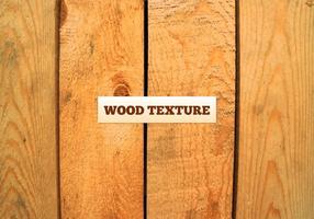 Texture de bois de vecteur libre