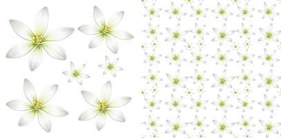 conception sans couture avec des fleurs blanches vecteur