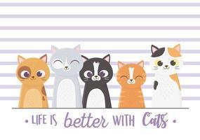 la vie est meilleure avec le modèle de carte postale de chats vecteur