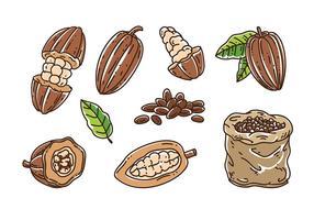 Vecteur de haricots de cacao