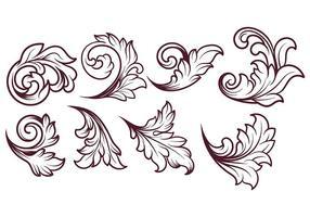 Vecteur acanthus