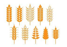 Icônes de tige d'avoine et de blé vecteur