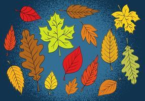Feuilles d'automne colorées vecteur