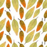 modèle de saison automne aquarelle feuilles tombantes
