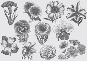 Fleurs vintage vecteur