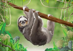 Paresseux dans la forêt tropicale de la jungle vecteur