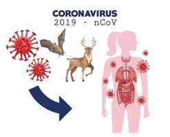 infographie de coronavirus avec figure de femme et animaux vecteur