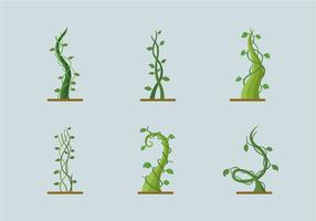Graine de graines de plantes à croissance verte vecteur