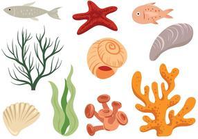 Vecteurs océaniques gratuits vecteur