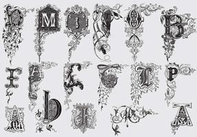 Lettres majuscules avec décor acanthus vecteur