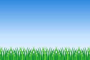 herbe verte et fond de ciel bleu vecteur