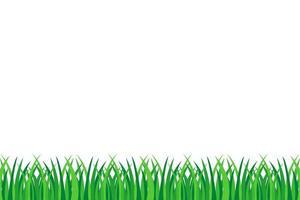 herbe verte isolée vecteur