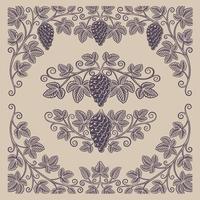 ensemble d'éléments de design vintage de branches et de bordures de raisin vecteur