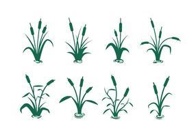 Vecteurs de silhouette cattail