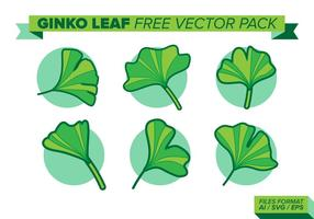 Pack de vecteur libre de feuilles de ginko