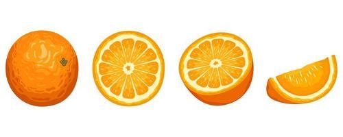 délicieux fruits orange vecteur