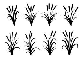 Cattails vecteurs de silhouette vecteur