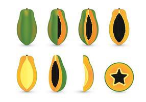 Ensembles vectoriels de papaye vecteur