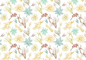 Vecteurs de motif d'herbes libres vecteur