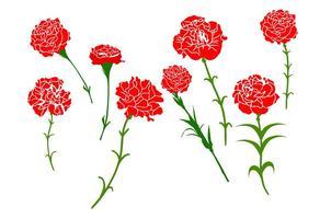 Vecteur de fleur d'oeillet gratuit