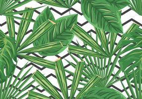 Green Palm Branches Récolte de dimanche Contexte vecteur