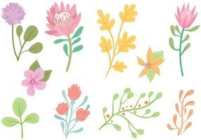 Vecteurs de fleurs en pastel transparent