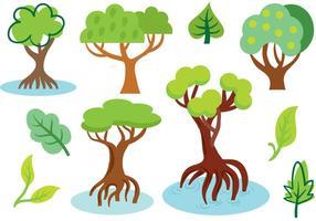 Vecteurs de mangrove gratuits vecteur