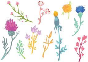 Vecteurs de fleurs sauvages libres vecteur