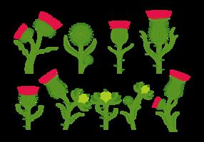 Vecteurs de fleurs de chardons vecteur