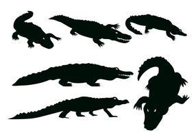 Vecteur Gator