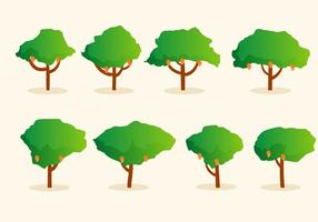 Vector Mango Tree gratuit
