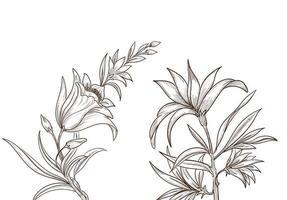 beau dessin floral de croquis artistique