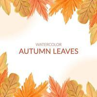 cadre de bordure de feuille automne aquarelle