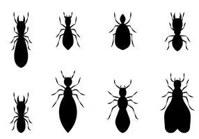 Vecteur de termites libre