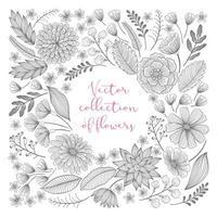 collection de croquis floraux dessinés à la main