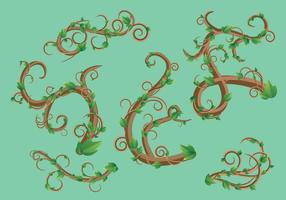 Paquet de vecteur feuille vert Liana