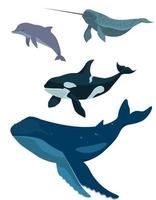 ensemble d & # 39; animaux marins