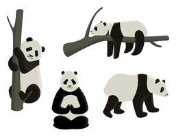 panda dans différentes poses vecteur