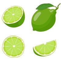 ensemble de citron vert entier et tranché vecteur
