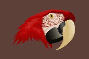 dessin à la main tête de perroquet rouge vecteur