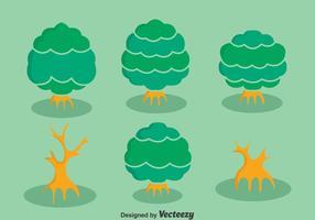 Vecteur de collection de mangrove