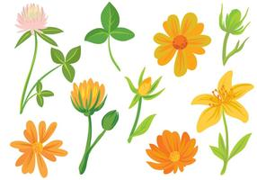 Vecteurs de fleurs libres vecteur